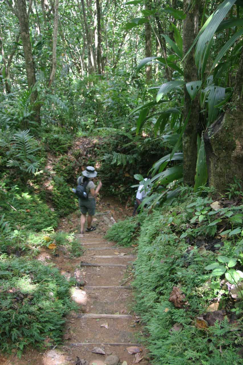 Julie embarking on the long descent