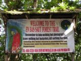 Enbas_Saut_Falls_008_jx_11292008 - Sign at the trailhead for the Enbas Saut Forest Trail