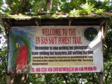Enbas_Saut_Falls_008_jx_11292008 - The sign at the trailhead