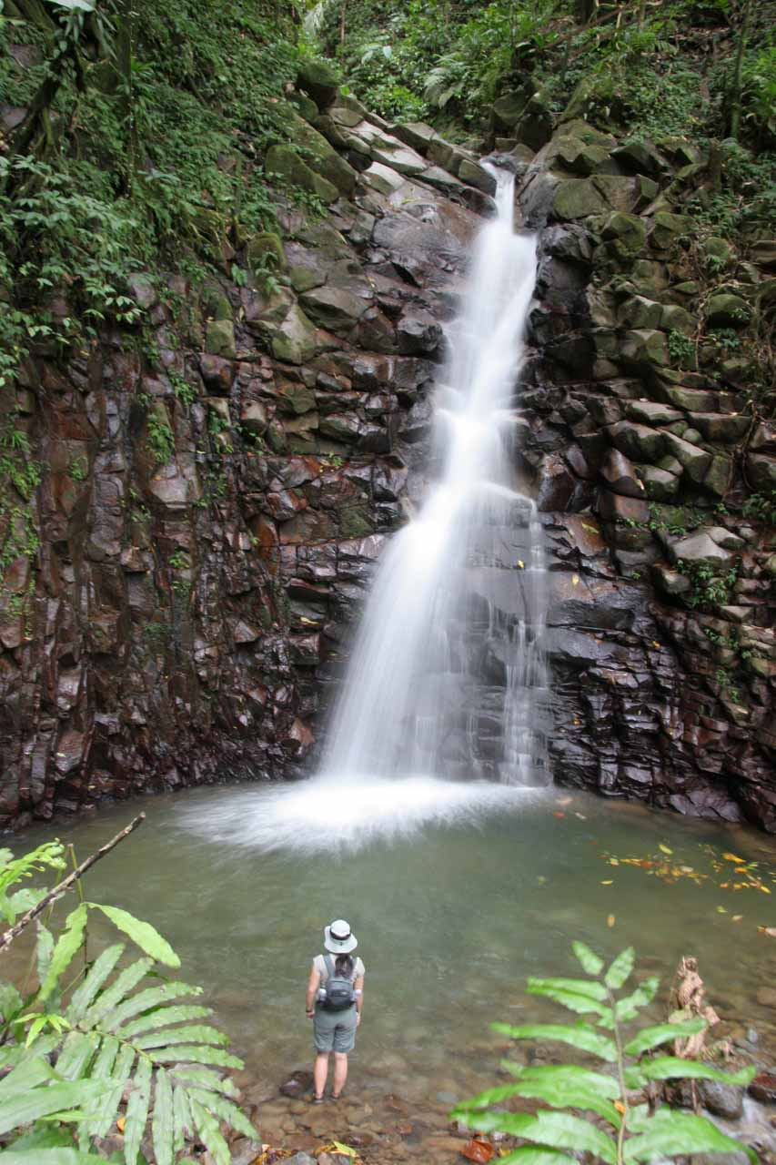 Enbas Saut Falls - Rainforest Hike to a Secluded Waterfall