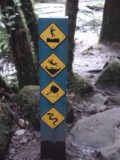 Erskine_Falls_023_jx_11162006 - Sign indicating some of the hazards we'd be facing if we continued to Straw Falls during our November 2006 visit