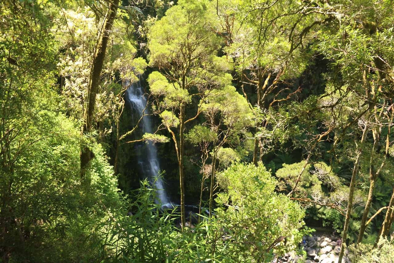 Looking down at the Erskine Falls from the upper lookout