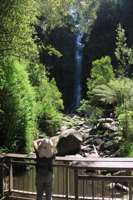 Erskine_Falls_17_022_11182017 - Context of Julie checking out Erskine Falls at the lookout, which was set back from the waterfall itself