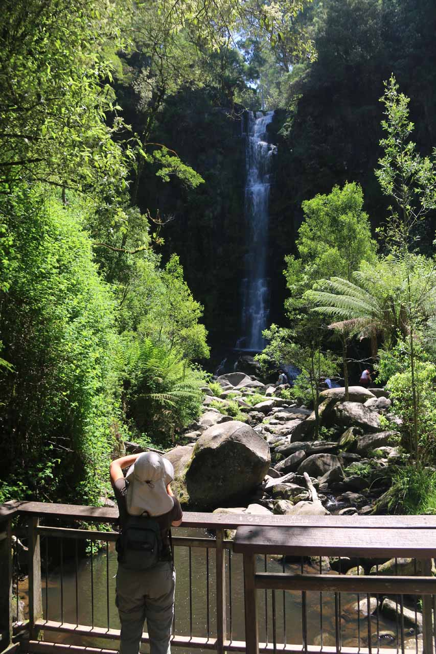 Julie checks out the Erskine Falls from the lower lookout on a sunny day