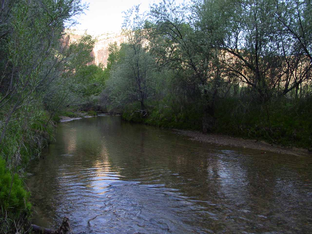 Along the Escalante River