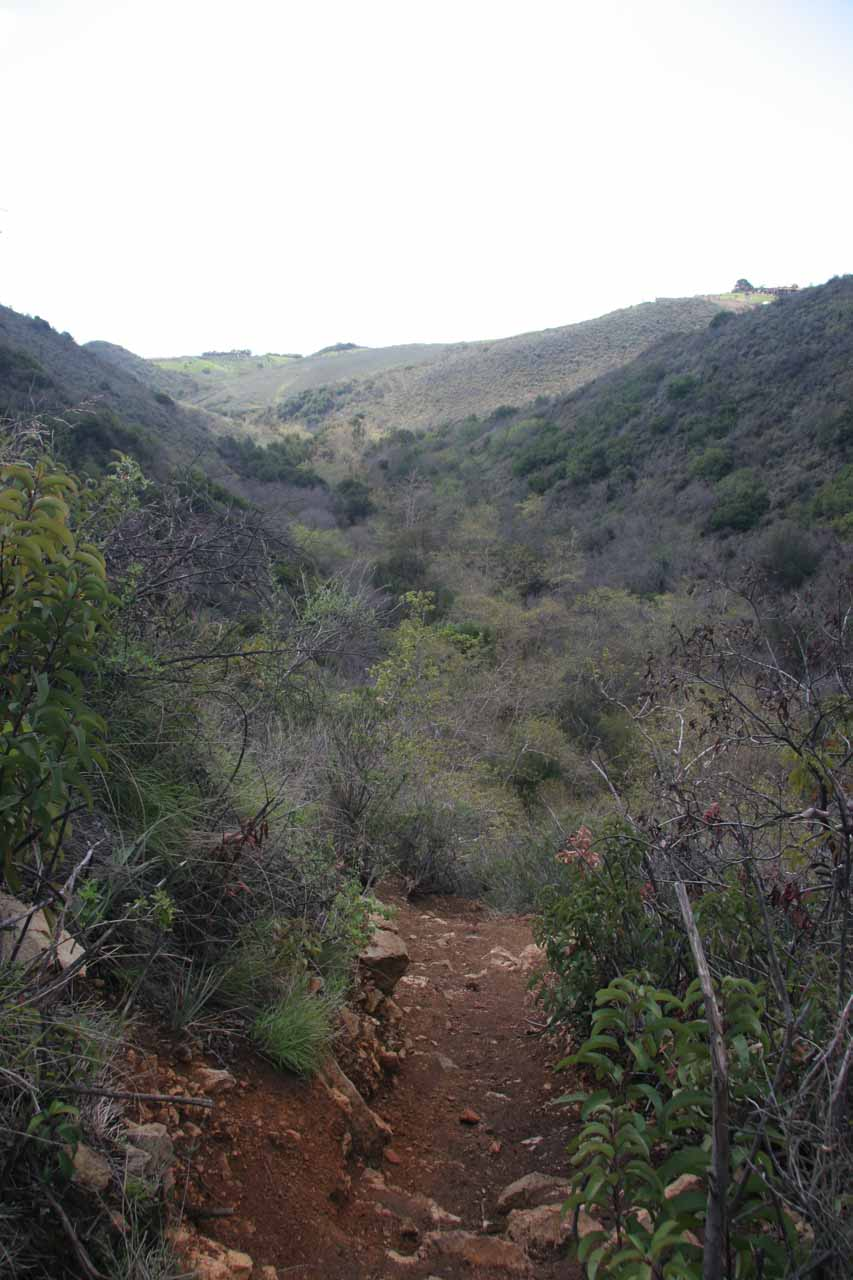 Looking down at Escondido Canyon from the top of the lower waterfall