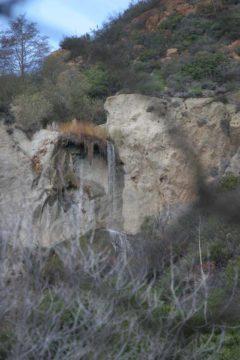 Escondido_Falls_058_02082009