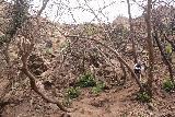 Escondido_Falls_194_04072019