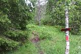 Espelandsfossen_Granvin_026_06252019 - Signs and arrows pointing the way confirmed that I was indeed on the right path to get to Espelandsfossen in Granvin
