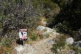 Etiwanda_Falls_118_02272021 - These signs used to not be here behind that weir. This use-trail eventually led to the Lower Etiwanda Falls