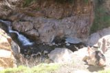 Etiwanda_Falls_168_02012015 - Context of Julie checking out the Etiwanda Falls