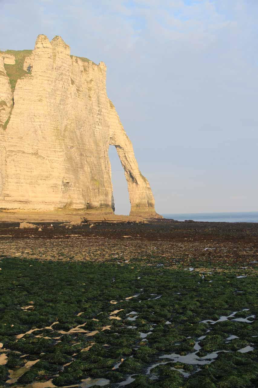 Slippery algal-covered rocks before Falaise d'Aval