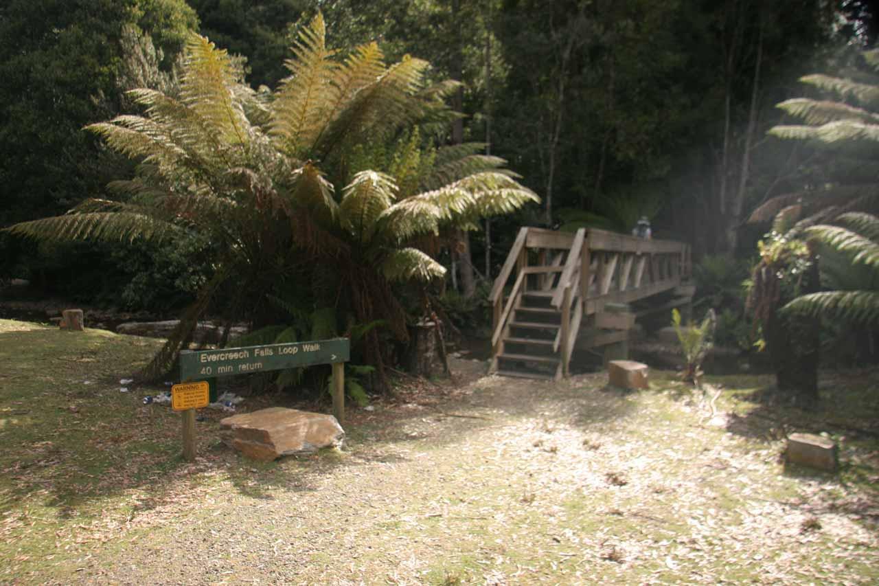 Starting the loop walk for the Evercreech Falls