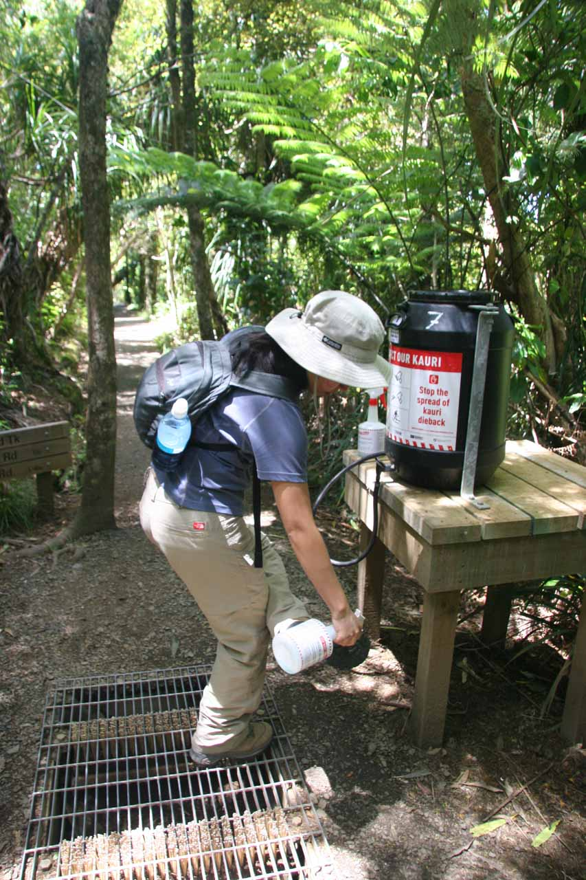 Julie spraying on the chemical on the bottom of her boots to help prevent the spread of Kauri Dieback Disease