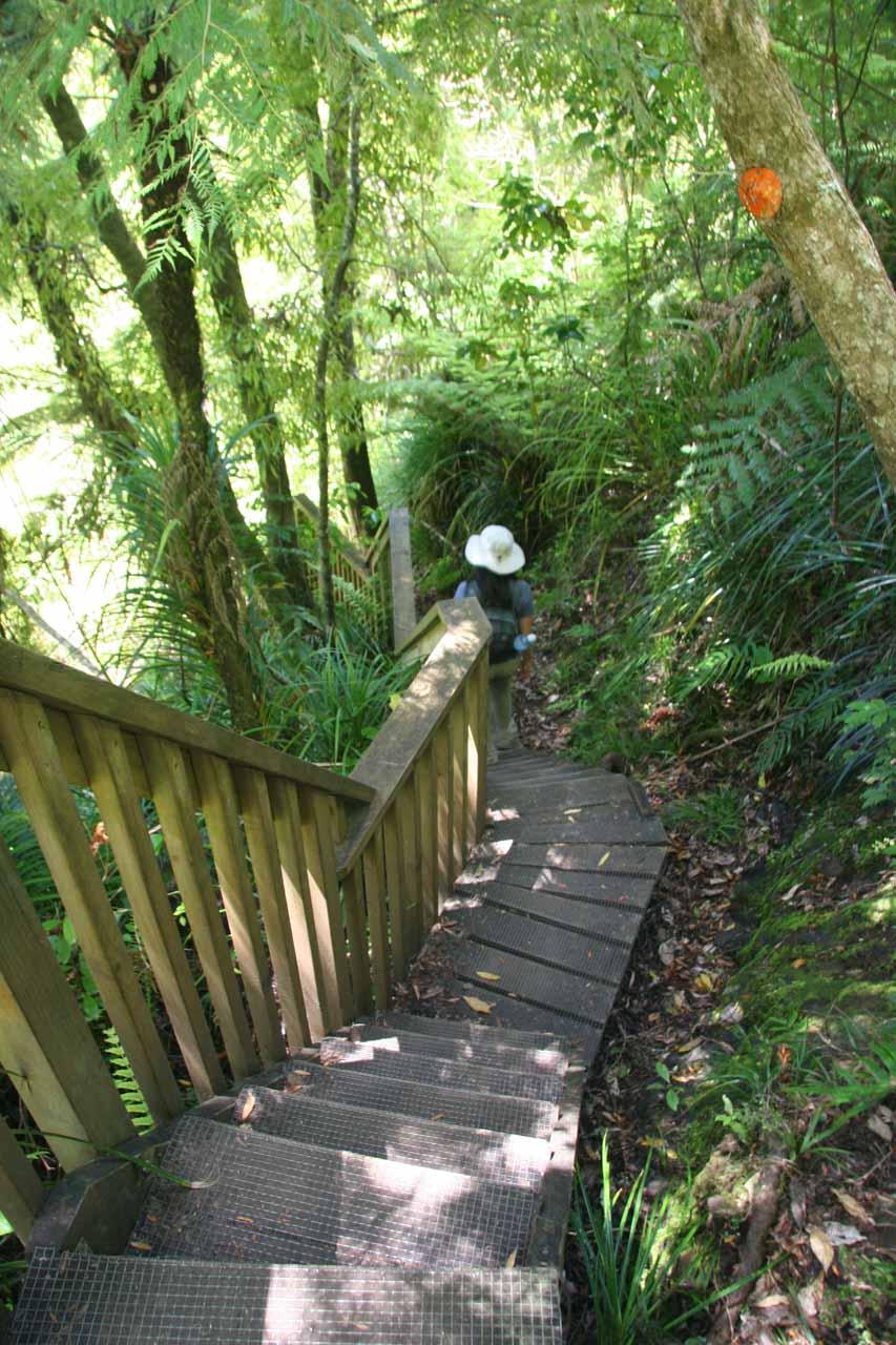 Julie continuing the descent alongside Fairy Falls