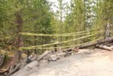 Fairy_Falls_Yellowstone_029_08112017 - This trail closure by the police tape suggested that there could either be more trail work to extend the Grand Prismatic Spring Overlook Trail this way.  Either that or maybe they're trying to restore where damage and erosion once occurred from social trails