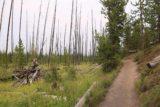 Fairy_Falls_Yellowstone_155_08112017