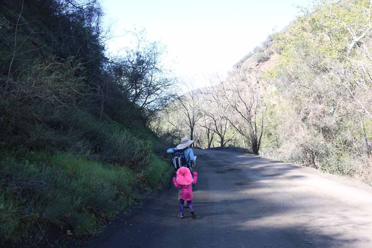 We then walked backwards along Trabuco Creek Road in search of the right place to scramble into Falls Canyon