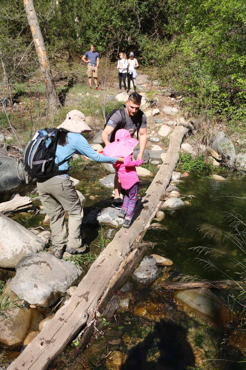 Julie and one of the guys from the hiking group assisting Tahia on the log crossing of Trabuco Creek