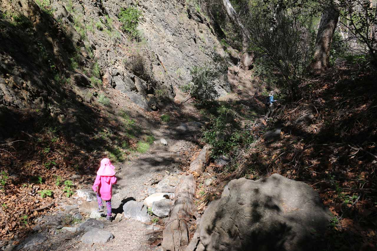Once we were in Falls Canyon, the trail-of-use was fairly obvious enough to follow that Tahia didn't have too much difficulty doing the hike on her own