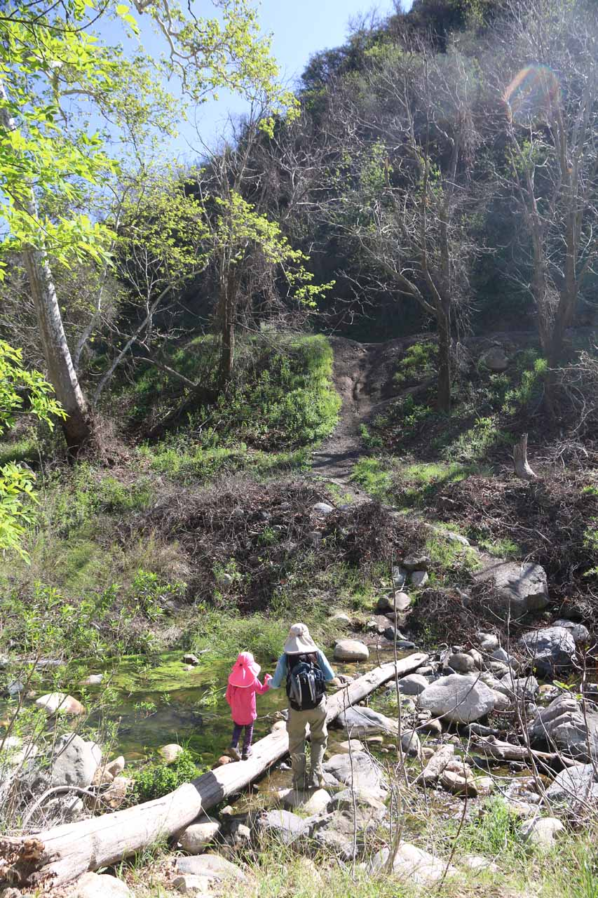 Back at the log crossing of Trabuco Creek