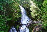 Falls_Creek_Falls_001_06212021 - Looking at Falls Creek Falls from the road bridge near Stevens Canyon in Mt Rainier National Park