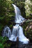 Falls_Creek_Falls_003_06212021 - Looking at the full tiers of Falls Creek Falls from the road bridge near Stevens Canyon in Mt Rainier National Park