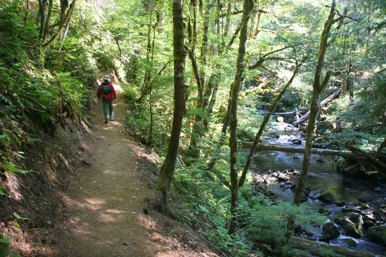 Julie hiking alongside the creek
