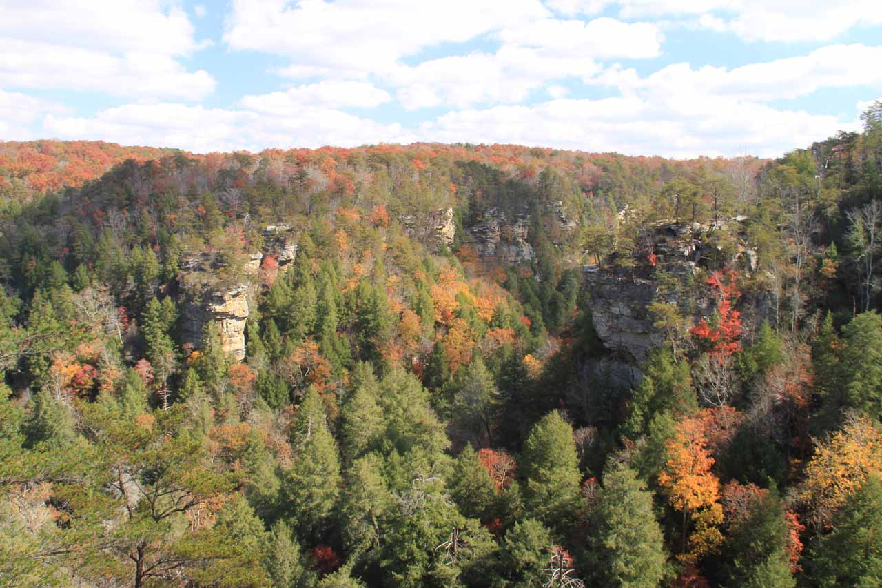 Given the steep terrain giving rise to Falls Creek Falls, it also made sense that there were many overlooks, especially in light of the gorgeous Autumn colors we saw