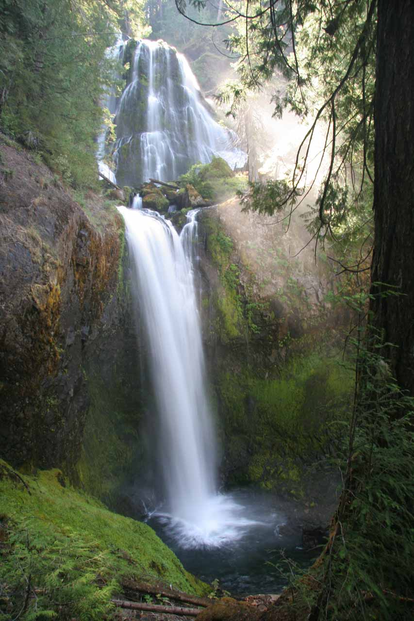 Finally made it to Falls Creek Falls