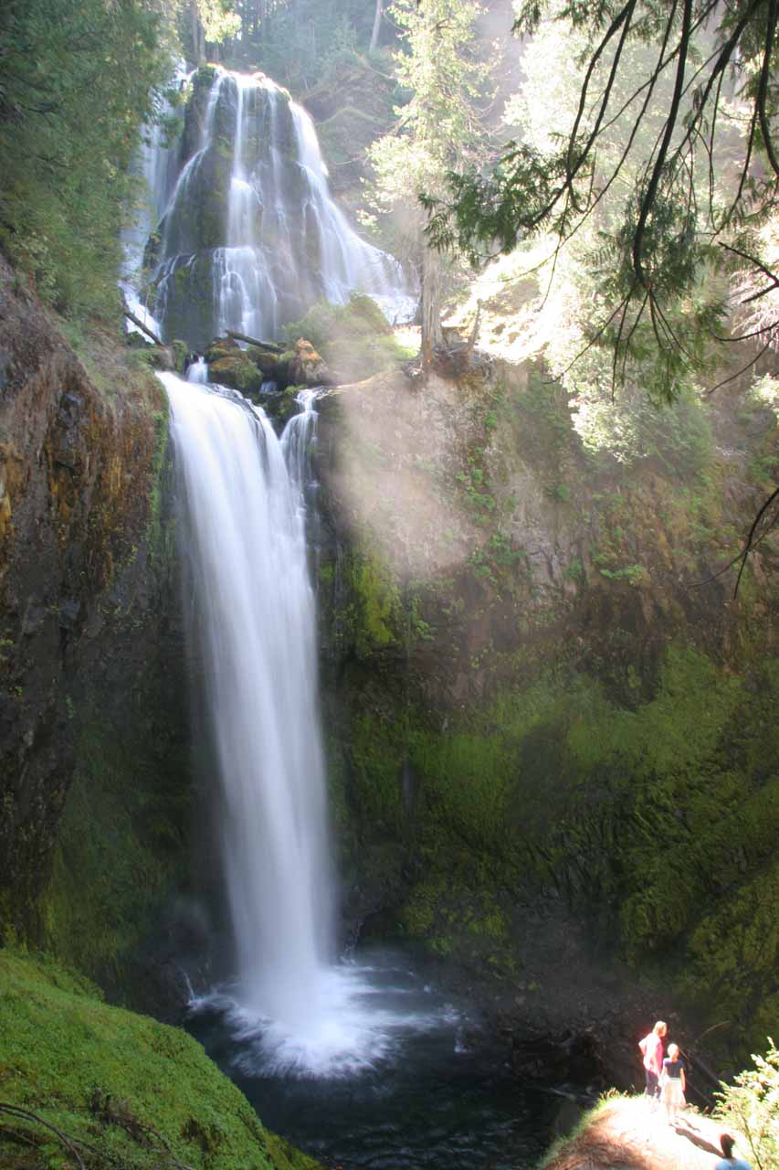 Falls Creek Falls Gifford Pinchot National Forest