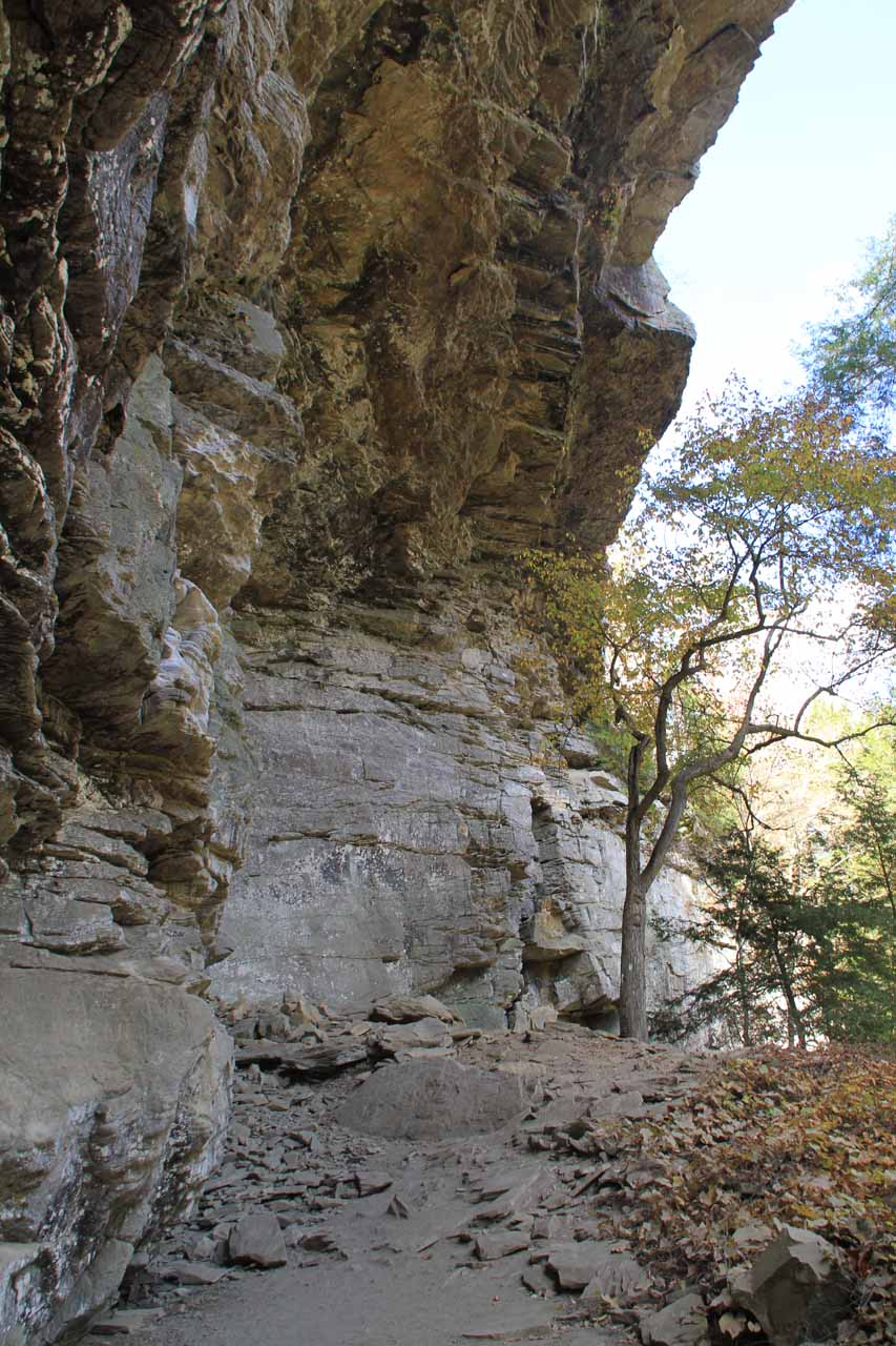 Looking up at the overhanging cliffs, which no doubt is the source of the rock falls here