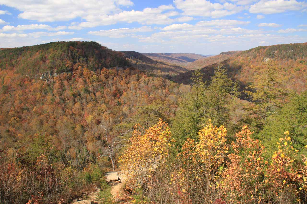 Milliken's Overlook, which was a spot where we could see the gorgeous scenery around Falls Creek Falls while being further accentuated with the peak of Autumn colors