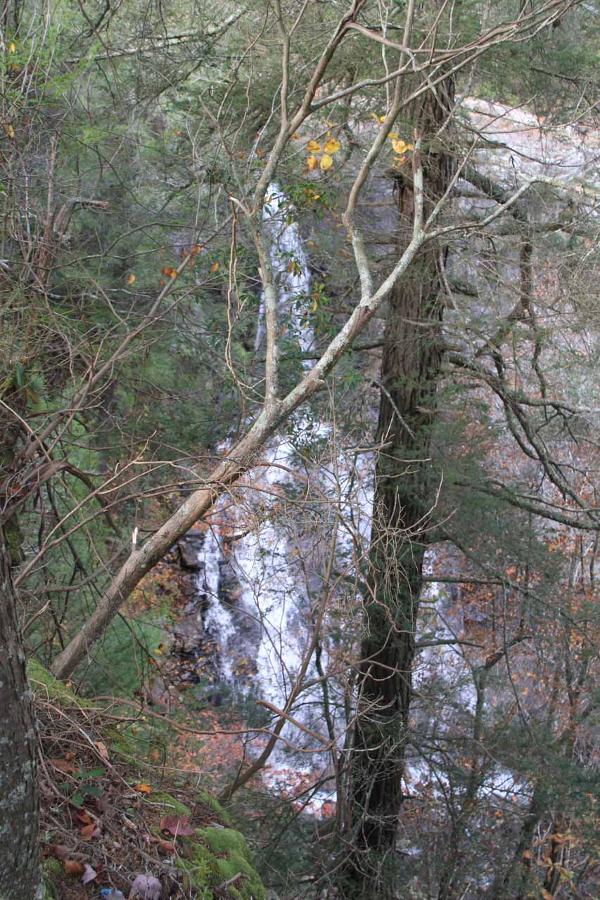 The Suspension Bridge trail led past this obstructed view of Piney Falls