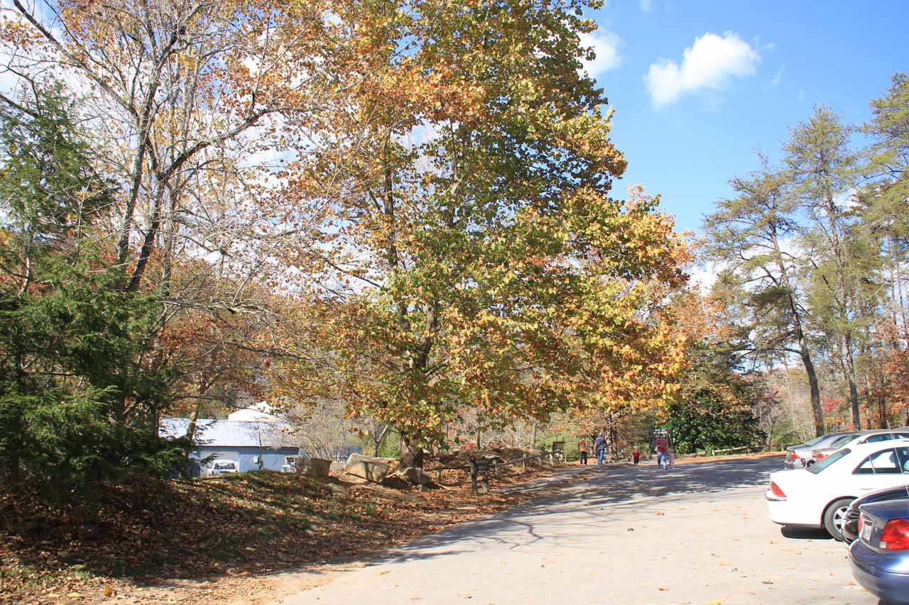 The car park for the Betty Dunn Nature Center