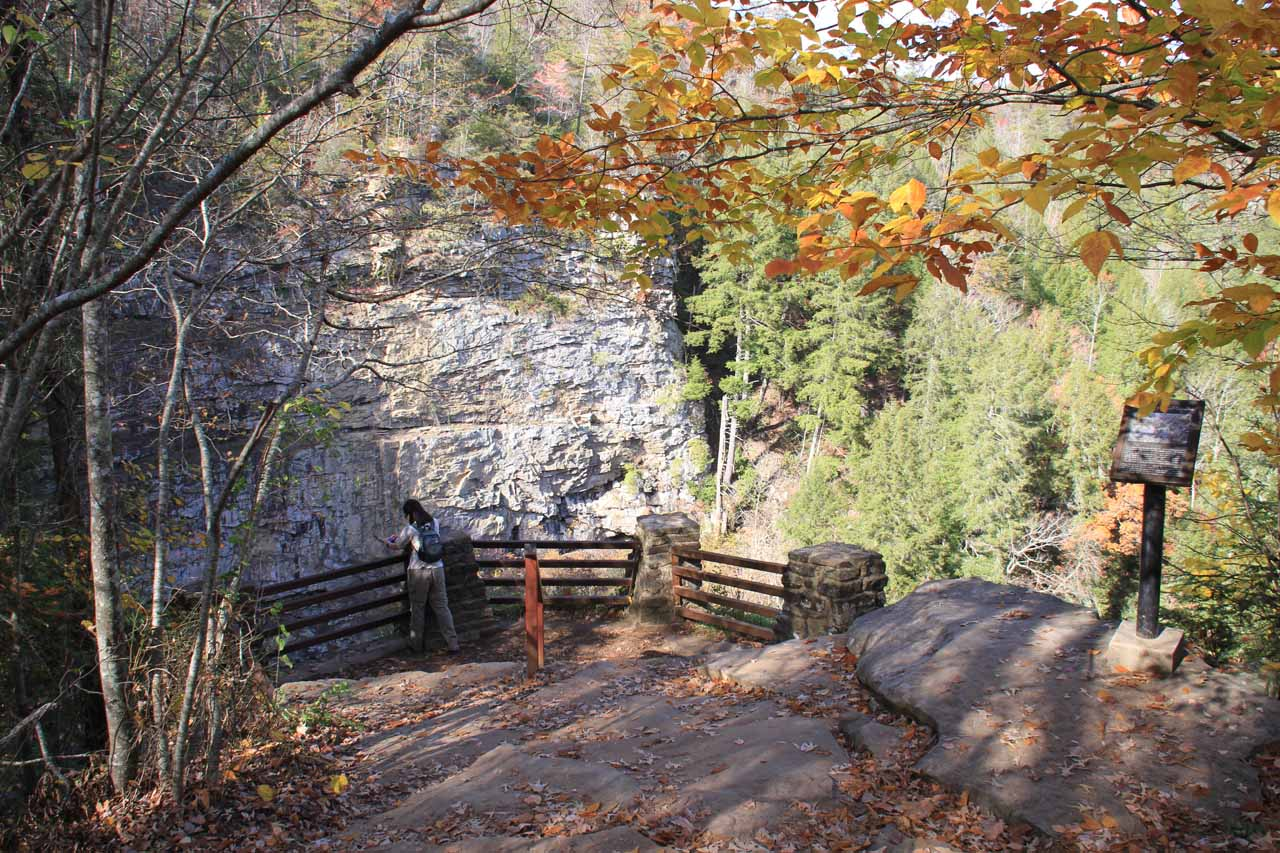 Overlook of Cane Creek Falls near the Nature Center