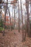Falls_Creek_Falls_120_20121025