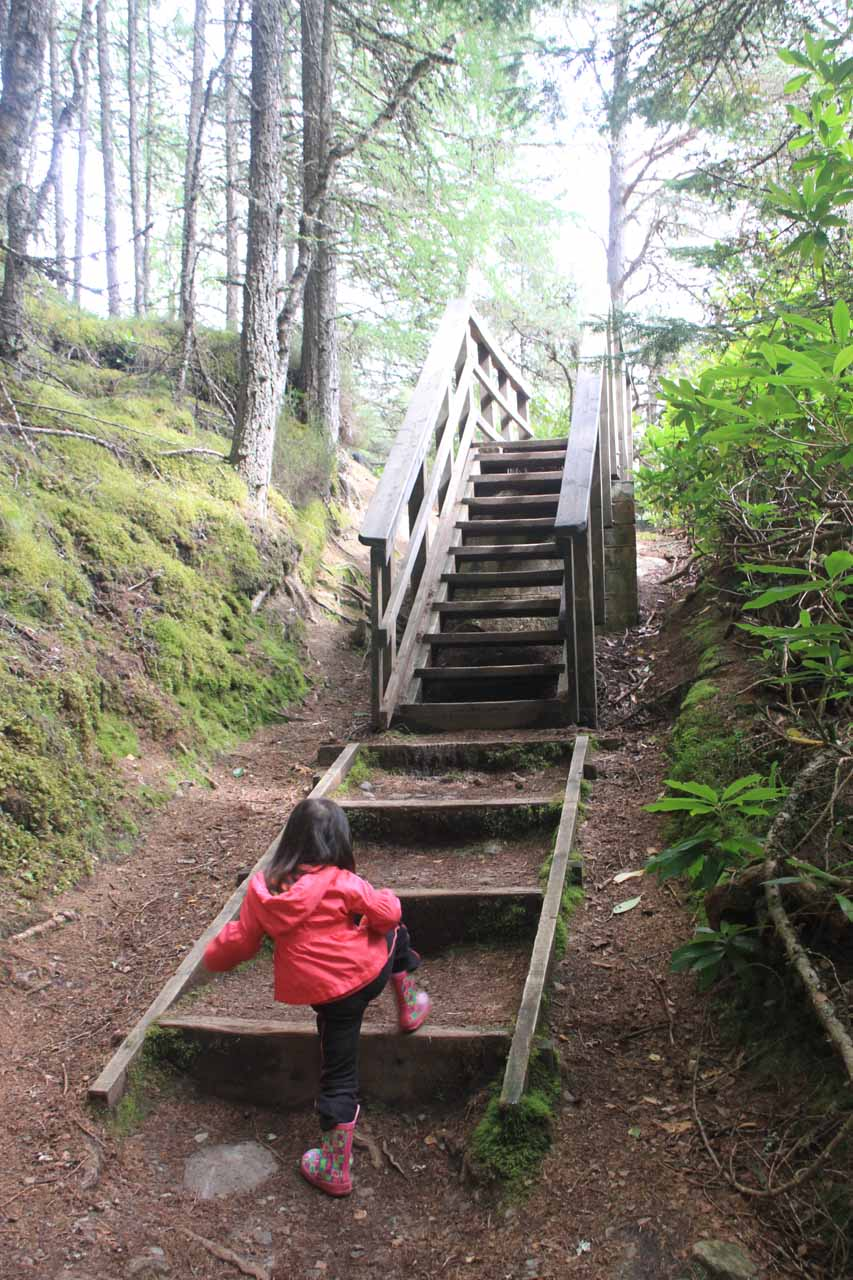 We were generally going uphill, and sometimes it involved tall steps like this one