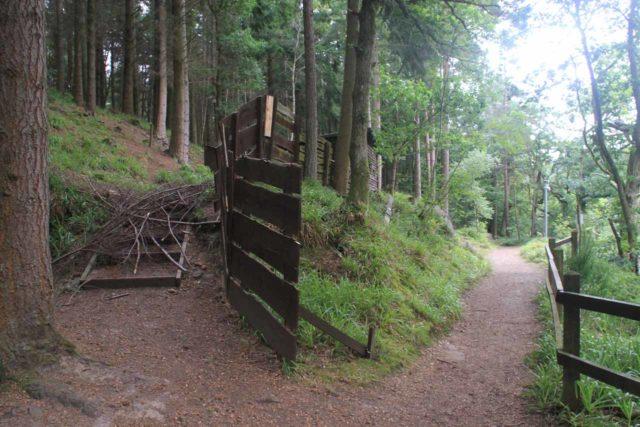 Falls_of_Clyde_084_08202014 - On the trail beyond Cora Linn towards the Bonnington Linn