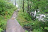 Falls_of_Falloch_007_08292014 - Walking alongside the stream in full spate towards the Falls of Falloch