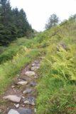 Falls_of_Glomach_047_08242014 - Context of the steep climb immediately after the footbridge over the Allt an Leoid Ghaineamhaich Stream