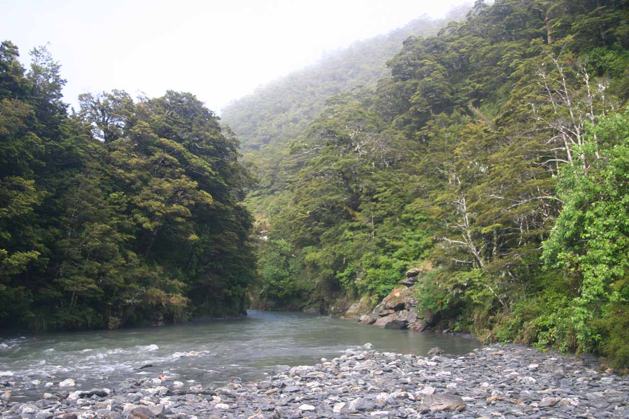 Looking downstream along the Haast River just as we passed through the bush separating the car park from the river