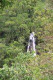Fautaua_Valley_010_20121214 - A closer look at that waterfall seen from the 4x4 road leading closer to Cascade de Fachoda