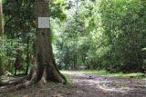 Fautaua_Valley_011_20121214