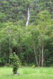 Fautaua_Valley_033_20121214