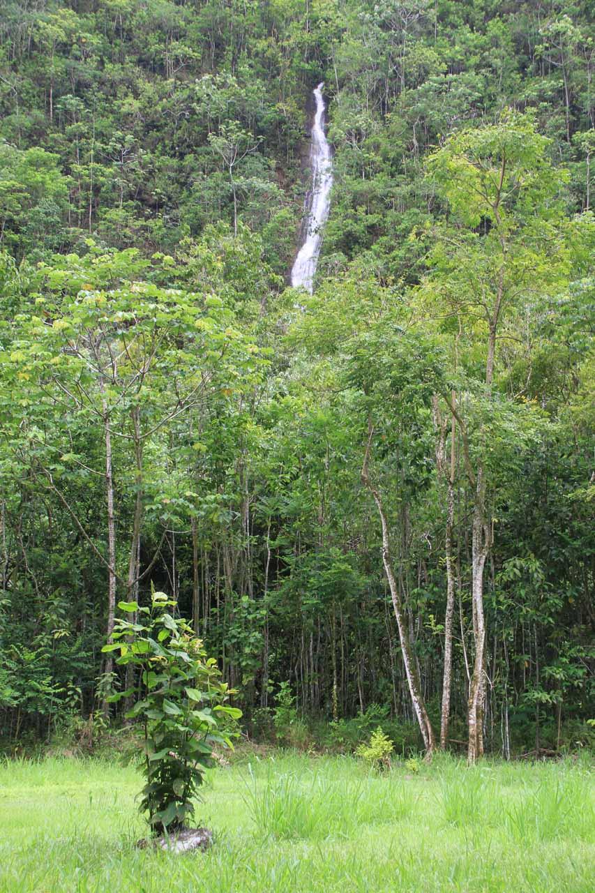 Another hidden waterfall seen along the road