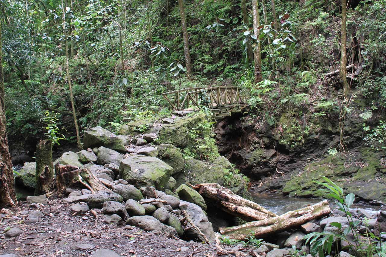 Bridge over the Fautaua River