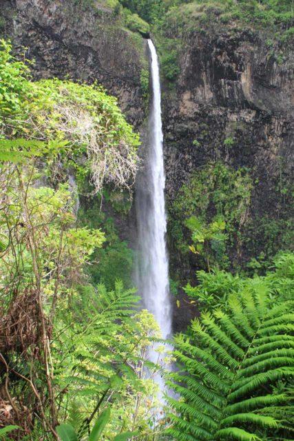 Fautaua_Valley_062_20121214