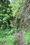 Fautaua_Valley_072_20121214