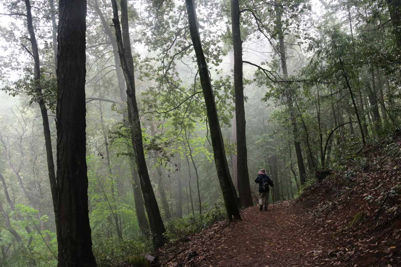 Our early start meant that there was still some lingering fog along the trail